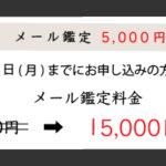【12/31まで】メール鑑定を5000円OFFにてお引き受けします